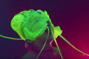 bjork-notget-jellyfish-mask